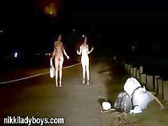 nikki ladyboys public nudity and prostitution